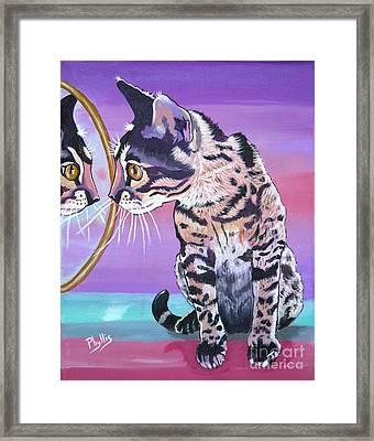 Kitten Image Framed Print by Phyllis Kaltenbach