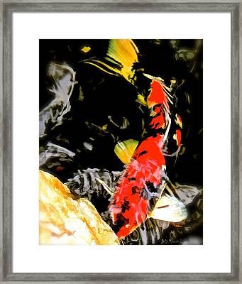 Koi Framed Print by Brian D Meredith