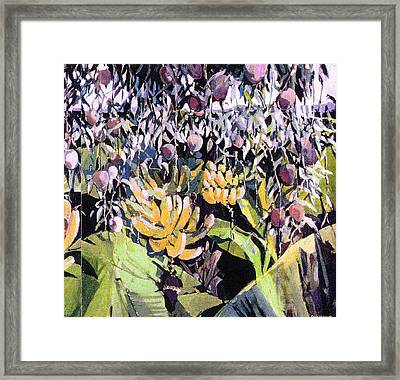 Framed Print featuring the painting Kona Garden by Andrew Drozdowicz