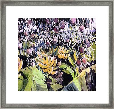 Kona Garden Framed Print