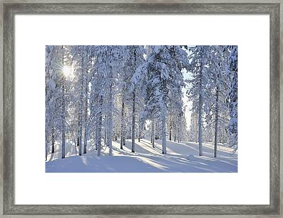 Kuusamo, Northern Ostrobothnia, Oulu Province, Finland Framed Print by Raimund Linke