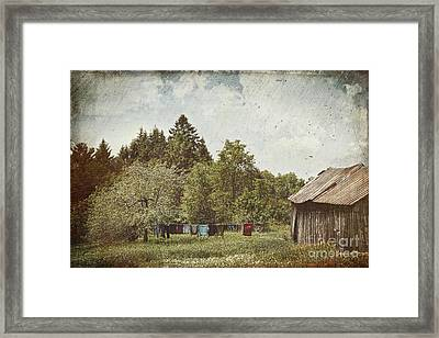 Laundry Drying On Clothesline On A Summer Day Framed Print by Sandra Cunningham