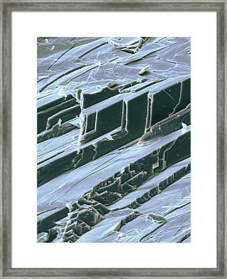 Lead, Sem Framed Print by Dr Kari Lounatmaa