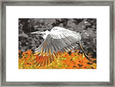 Leaden Wings Framed Print