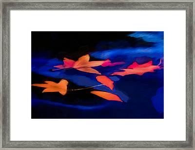 Leaves On Water Framed Print
