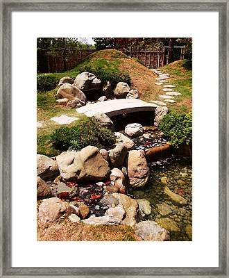Let's Take A Walk Framed Print by Nina Fosdick