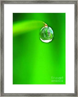 Lighting Drop Framed Print