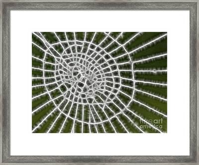 Lighting Web Framed Print