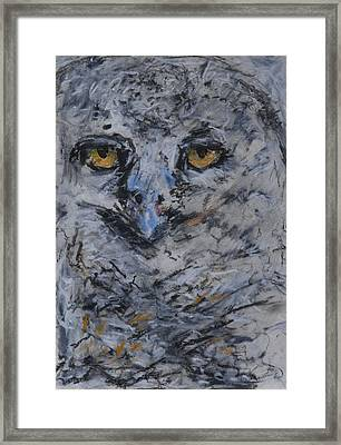 Lipstick Owl Framed Print by Iris Gill