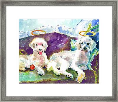 Little Angels Poodles Framed Print by Marsden Burnell