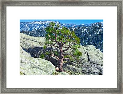 Living Above The Circumstances Framed Print