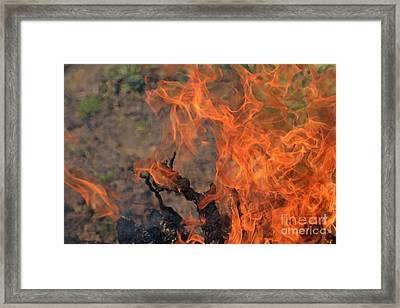Log Fire And Flames Framed Print by Sami Sarkis