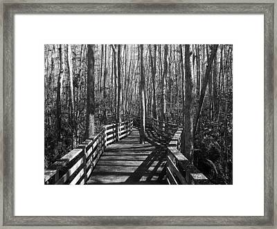 Lone Warrior Framed Print
