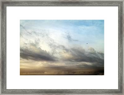 Loner Framed Print