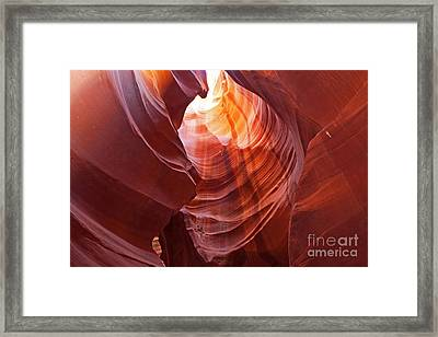 Framed Print featuring the photograph Looking Up by Bob and Nancy Kendrick