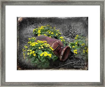 Marsh Marigolds Framed Print by The Stone Age