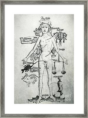 Melothesic Figure Framed Print by Photo Researchers