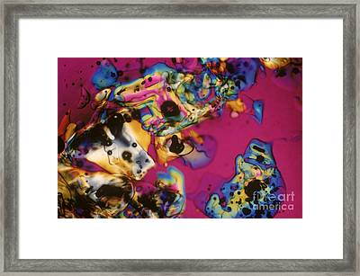 Melting Ice Framed Print by Michael W. Davidson