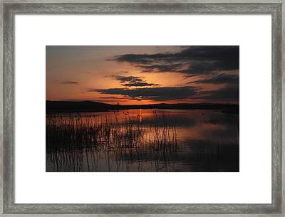 Menlo Sunset Framed Print