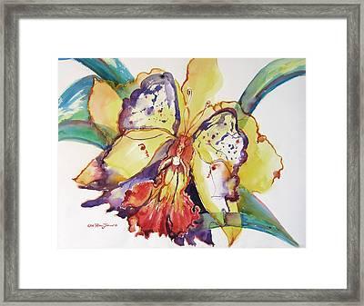 Metamorphosis Framed Print by Estela Robles