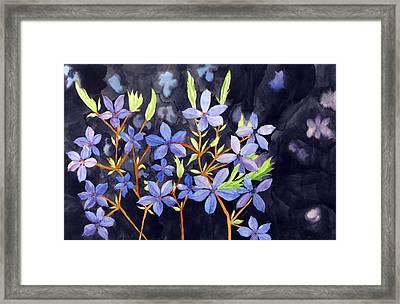 Midnight Blue Framed Print by Debi Singer