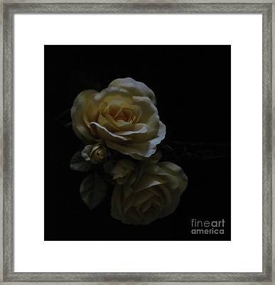 Midnight Roses Framed Print by Cedric Hampton