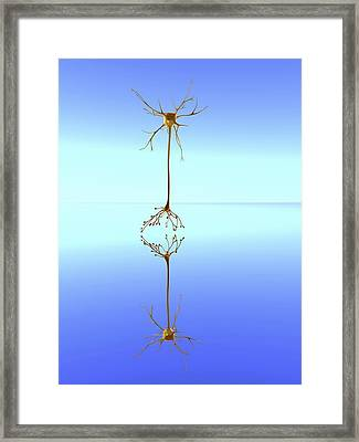 Mirror Neuron, Conceptual Image Framed Print by Pasieka