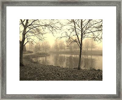Mist Framed Print by Amy Norden