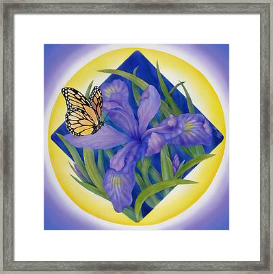 Monarch Butterfly And Iris Framed Print by Marcia  Perry