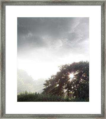 Morning Sunlight  Framed Print by Les Cunliffe