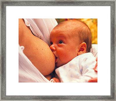 Mother Breast-feeding Her 3 Month Old Baby Boy Framed Print by David Parker