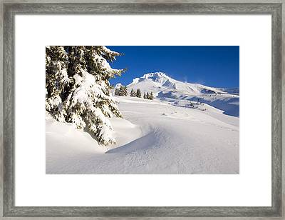 Mount Hood, Oregon, United States Of Framed Print by Craig Tuttle