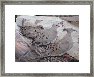 Mourning Framed Print by Kristine Bogdanovich