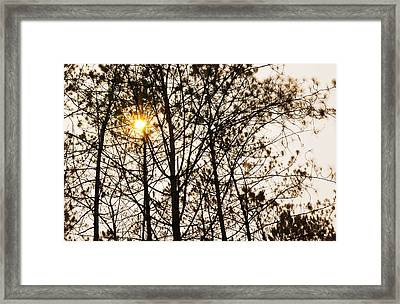 Nature Framed Print by Natee Srisuk