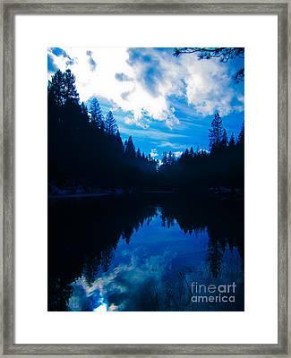 Nature's Blueprint Framed Print by Dan Julien