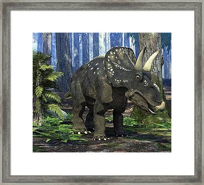 Nedoceratops Dinosaur, Artwork Framed Print by Roger Harris
