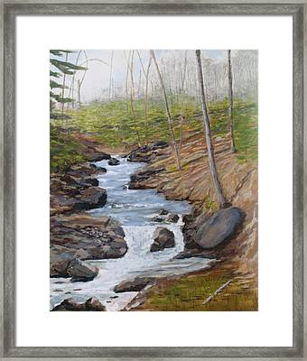 New Growth. Pretty River. Collingwood Framed Print by Humphrey Carter