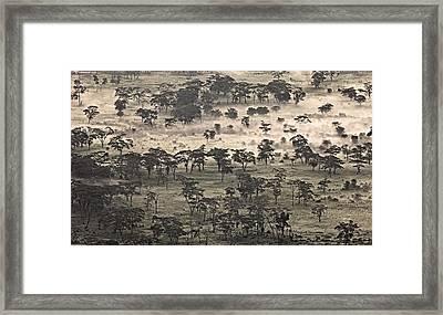 Ngorongoro Crater, Tanzania, Africa Framed Print by Carson Ganci