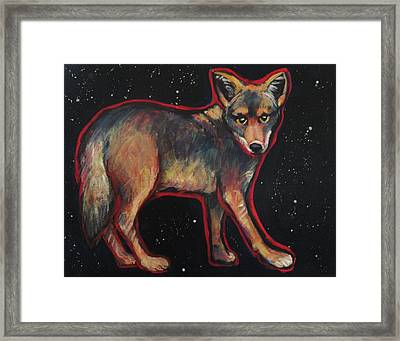 Night Coyote Framed Print by Carol Suzanne Niebuhr