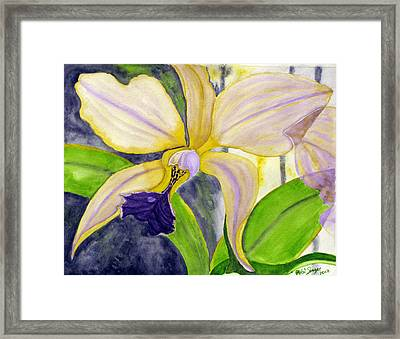 No Ordinary Orchid Framed Print