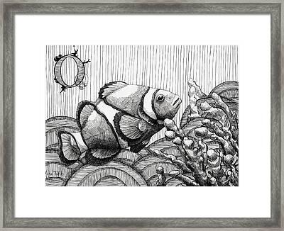 Ocellaris Framed Print