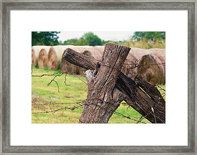 Old Cross Fence Framed Print by Lisa Moore