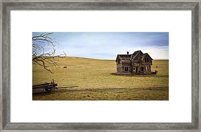 Old Farmland Framed Print by Steve McKinzie