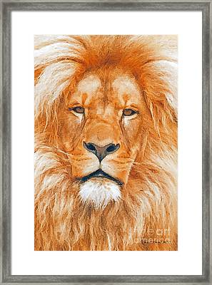 Old Lion Framed Print by Jerry L Barrett