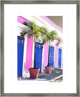 Old San Juan  16 Framed Print