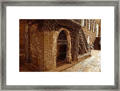 Old Savannah Framed Print by David Lee Thompson