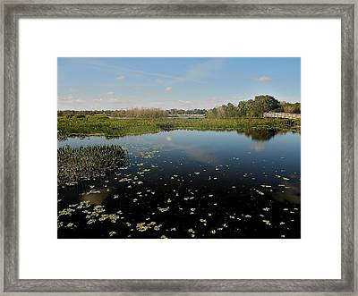 On A Clear Day Framed Print by Sheila Silverstein