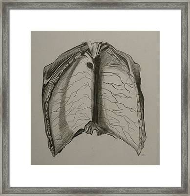 Open Up Framed Print by Beula Daisle