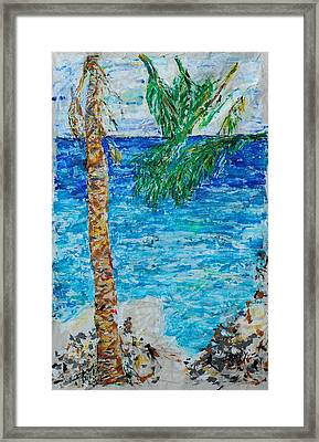 Palm 06 Framed Print by Bradley