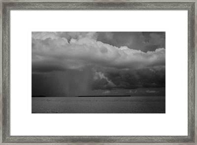 Palm Key Framed Print by Bob Hartmann